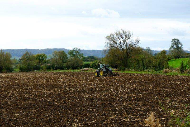 Tractor busy in the field