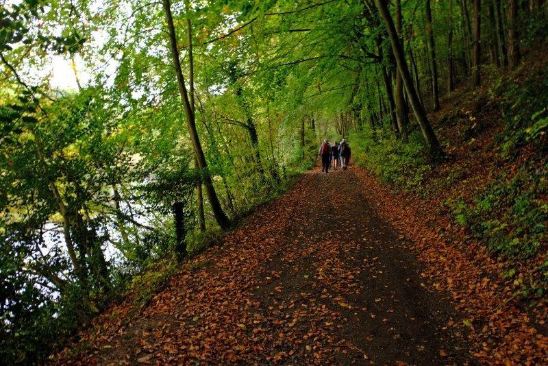 Following the lakeside path
