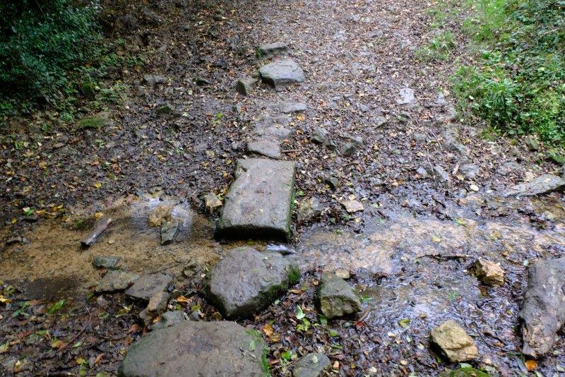 Then continue downhill, crossing the stream at the bottom