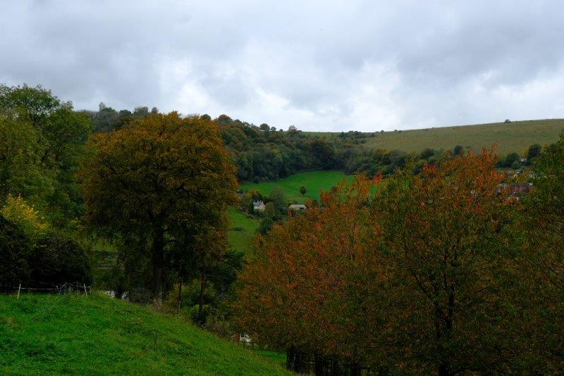 Looking over to Rodborough Common