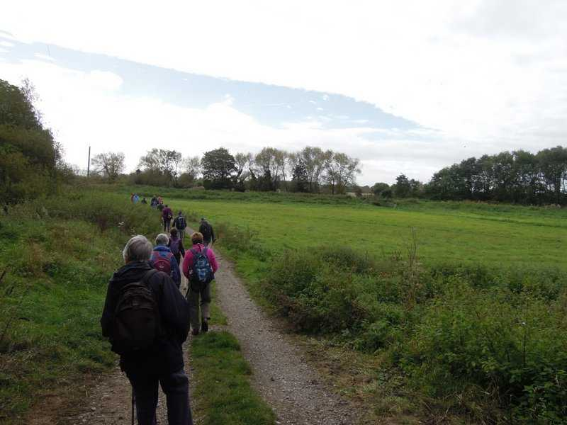 We learn how the old canal now carries the river Frome