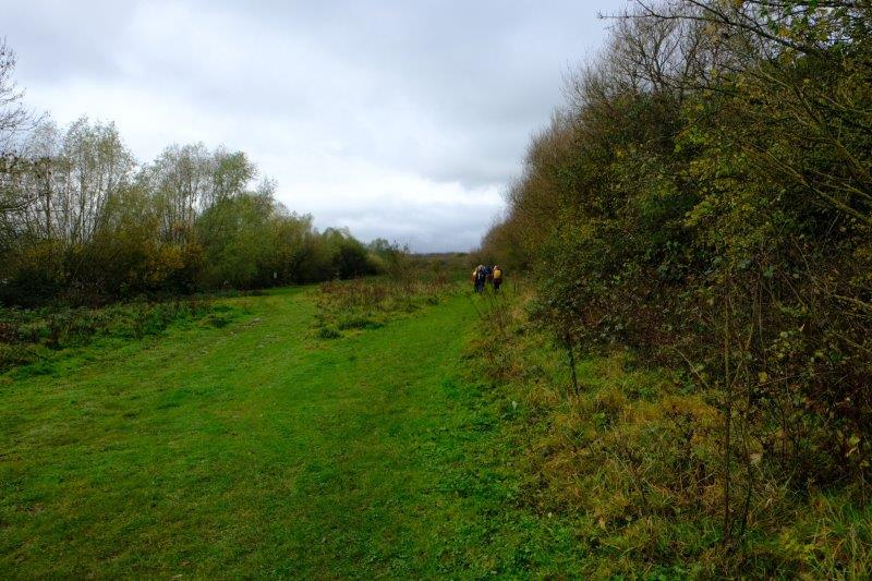 Following a grassy track