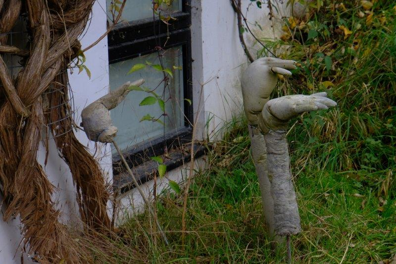 Passing a rather unusual garden ornament