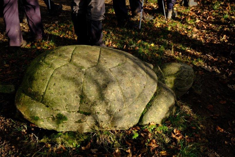 Past some stone carvings, a turtle