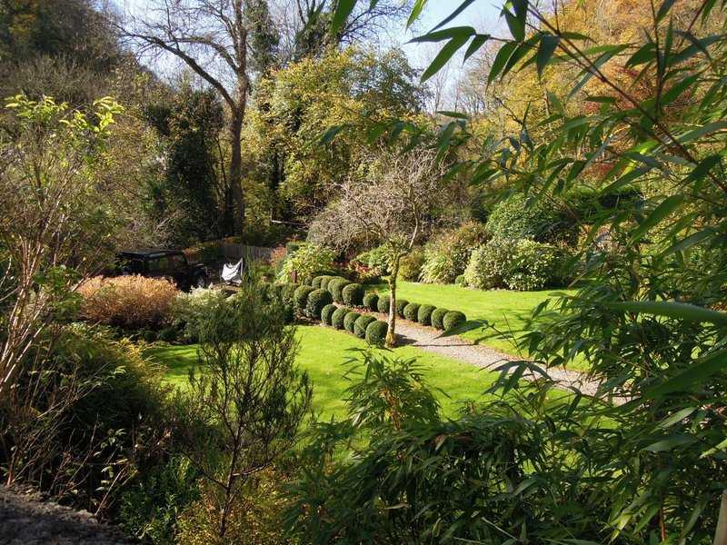 An interesting garden