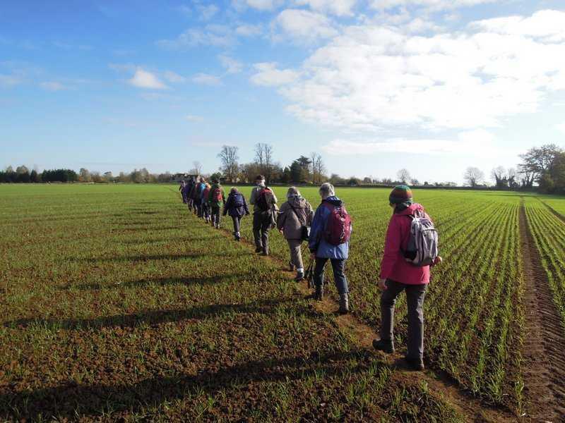 Now crossing fields