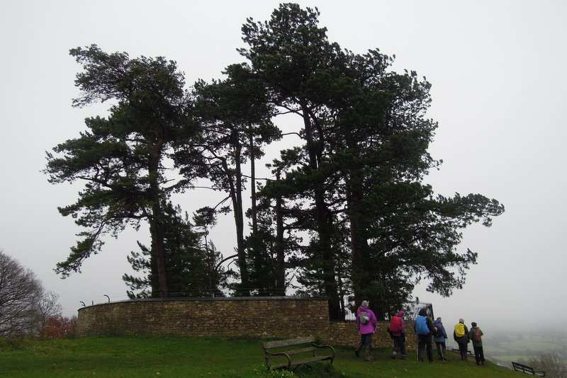 We descend past the trees on Wotton Hill