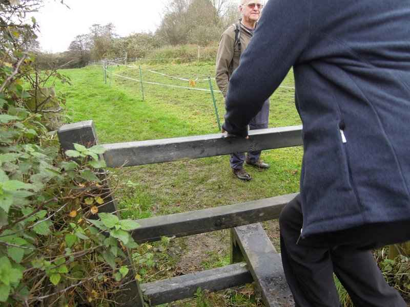 A stile made from recycled plastic we think - very strong!