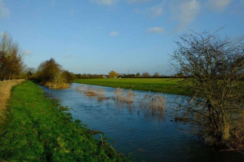 Plenty of flooding