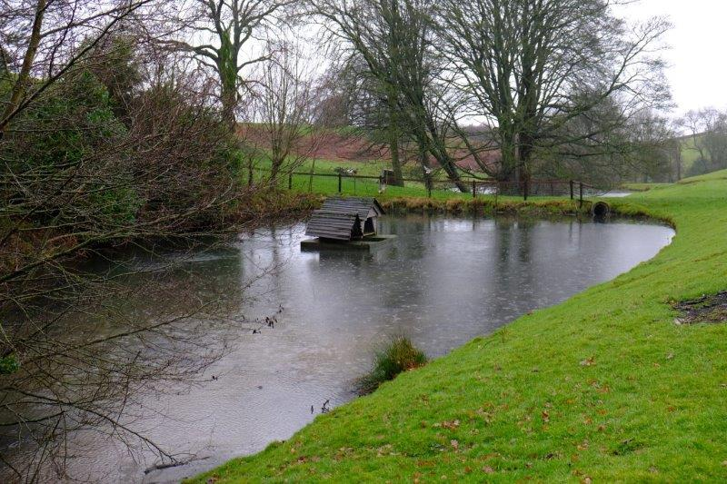 Past pond with duck house