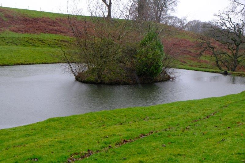 This pond has an island