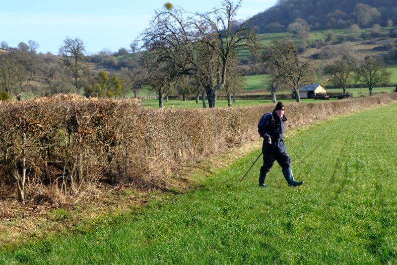 Strung out across fields
