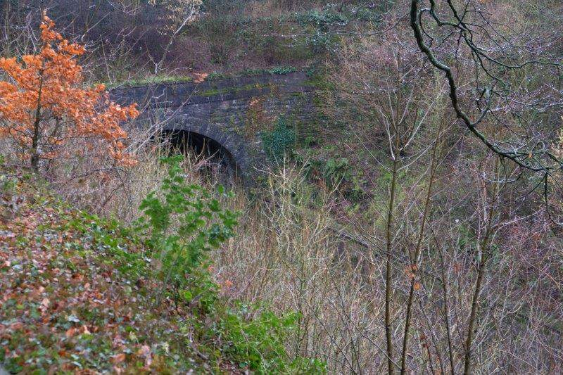 Looking down to the portal to the Eastern stretch of the Sapperton  Railway Tunnel