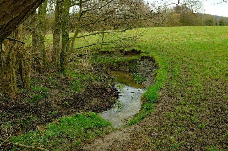 A stream cutting a deep path through this field
