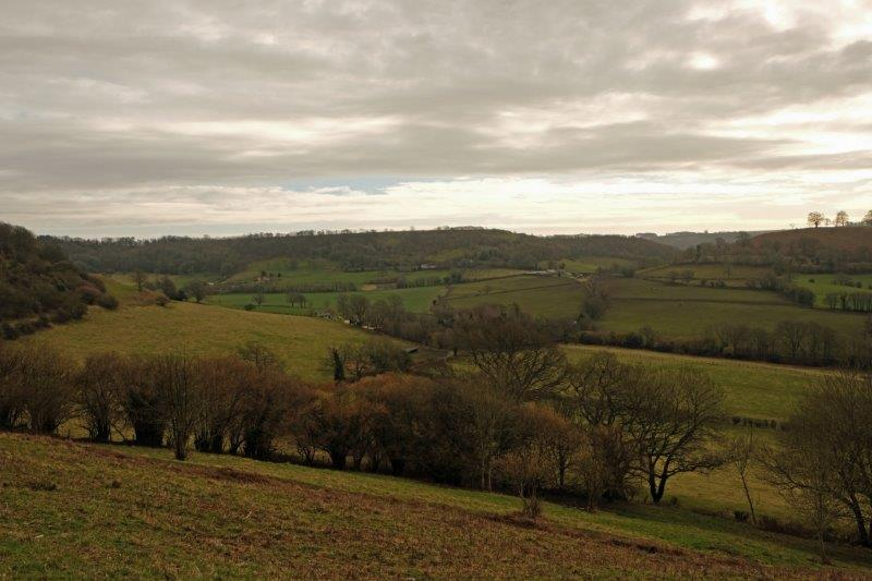 Looking across to Uley Bury