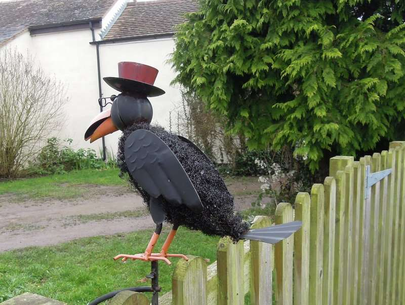 Has he escaped from Slimbridge?