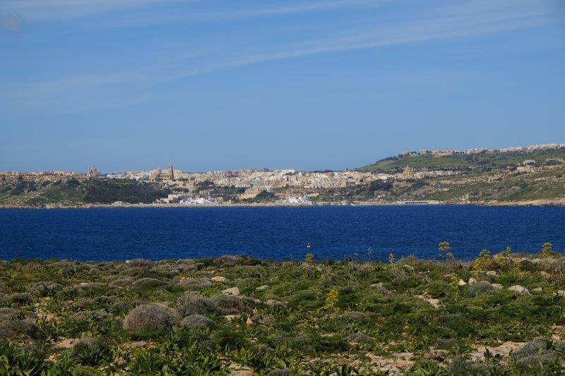 On the Island we head for the Blue Lagoon looking across to Gozo