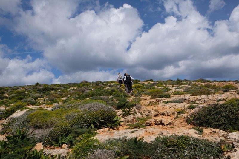 Followed by a short climb