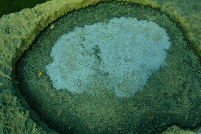 Salt forming