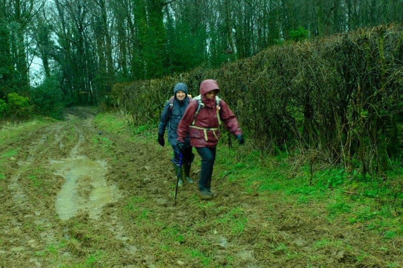 Along muddy tracks