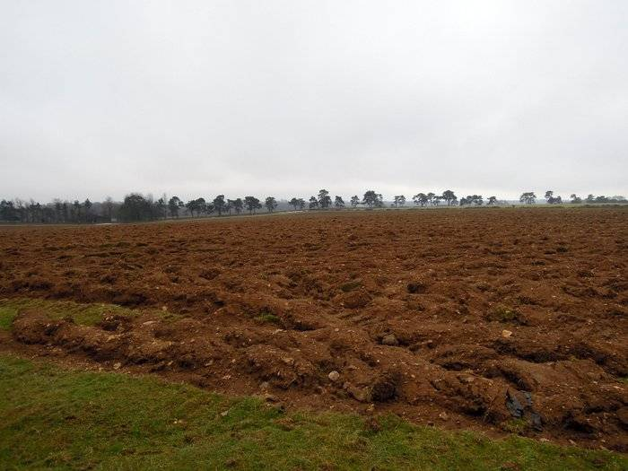 Winter ploughing has been completed