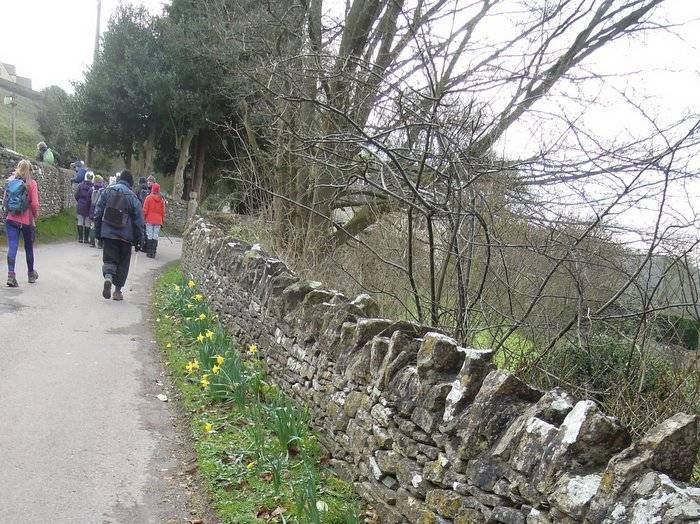 And wayside daffodils