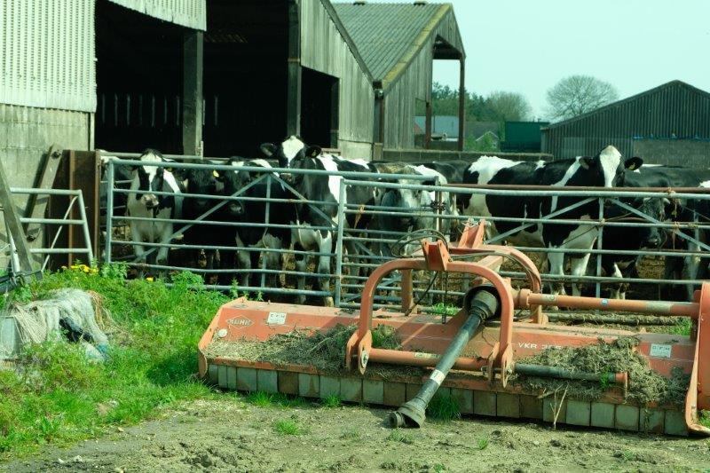 Past the farm