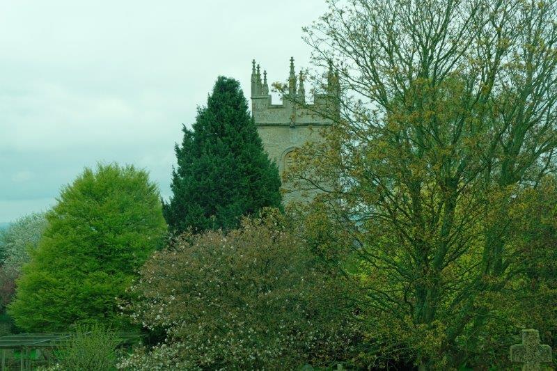 Village church behind the trees