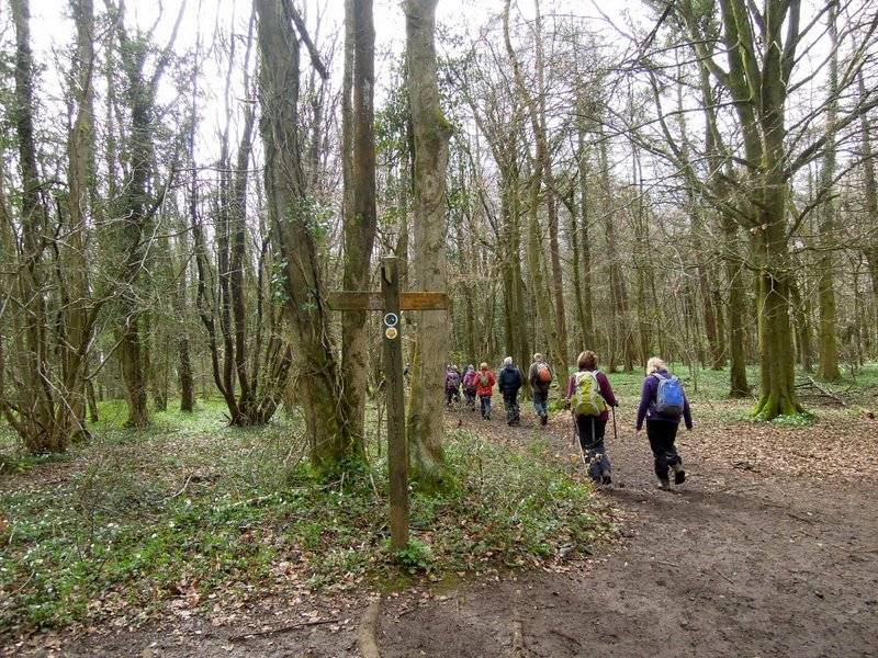 We leave the Cotswold Way