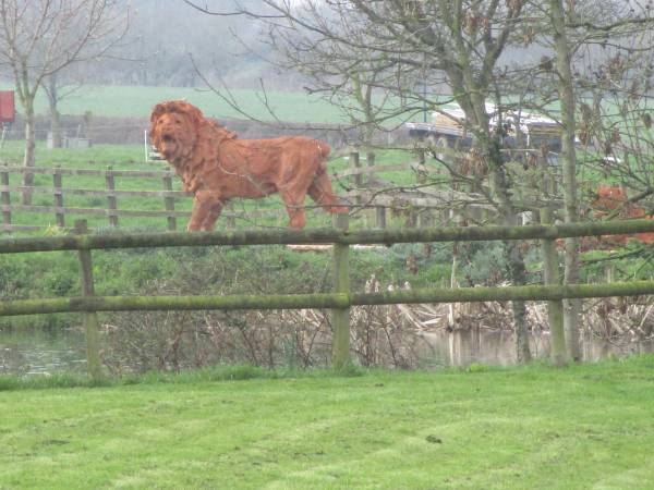 There's a life-sized lion next door!