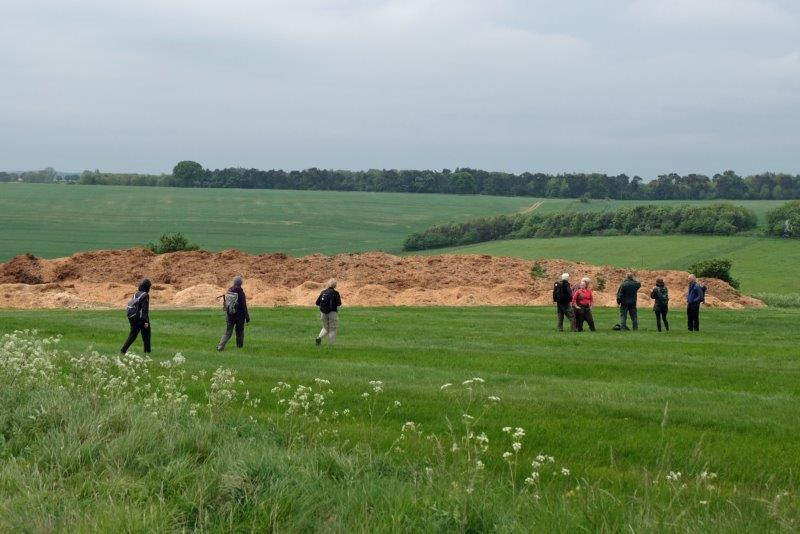 A pause to gaze at a very large muckheap