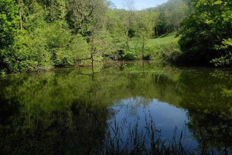 Past a smaller pond