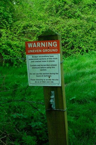 And a warning about badger holes