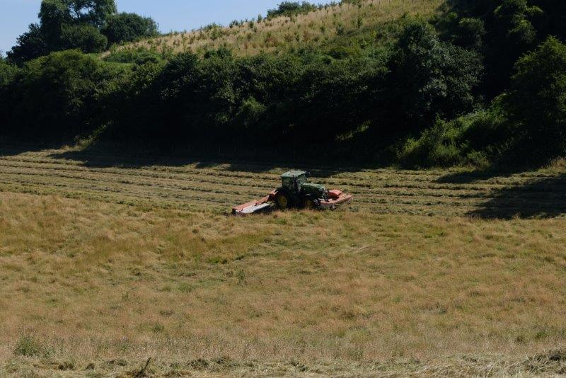 A farmer busy in the next field