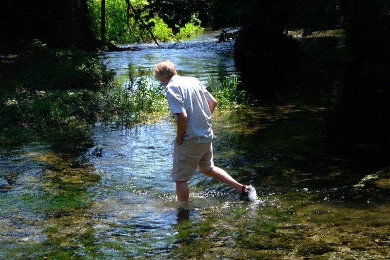 Our aquatic members paddle