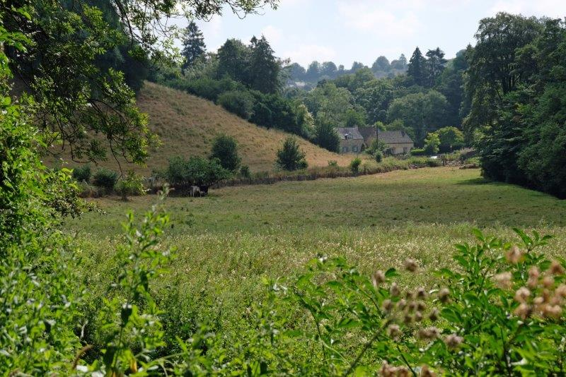 Part of the water meadow referred to Bakers Mil at the end