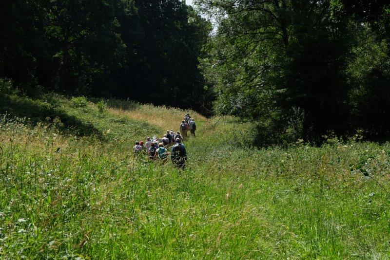 Our path taking us through grassy meadows
