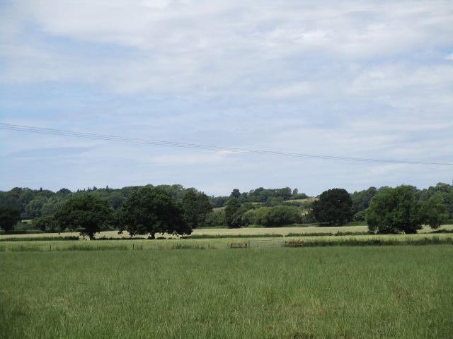 The Deer Park ahead