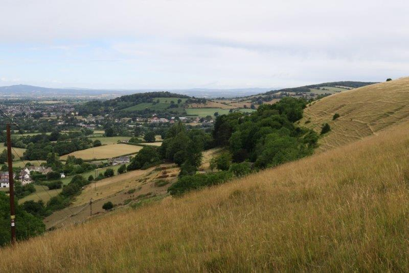 View over to Doverow and Standish Woods