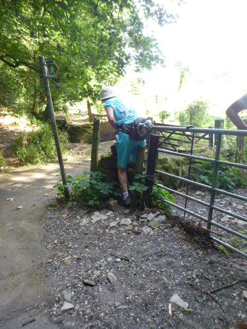 A very difficult stile