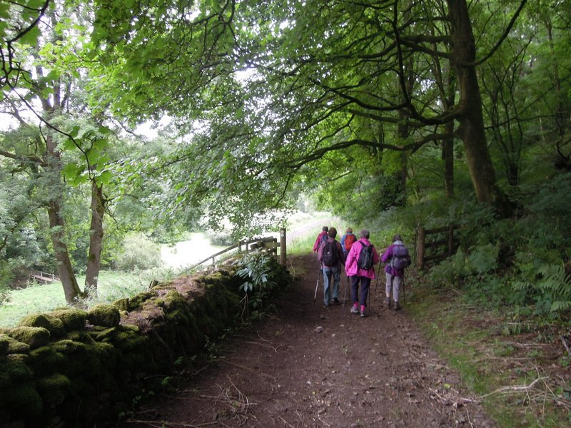 We are descending down the valley through Ostrich Wood (no, none there)