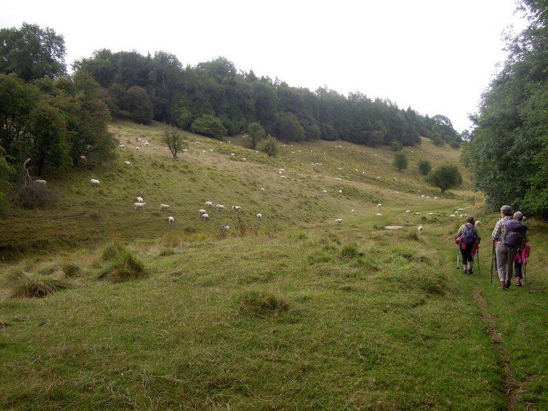 We turn round near Caudle Green