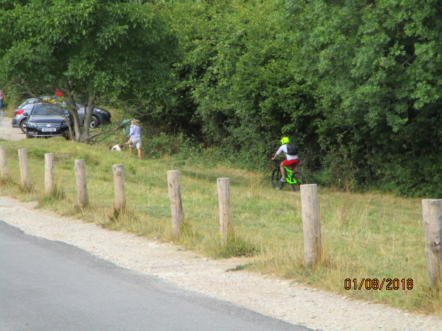 On Cranham Common we find a camouflaged cyclist