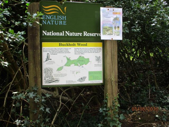 Entering Buckholt Wood