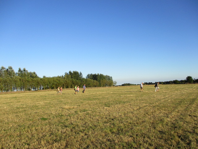 Across a field near Old Common