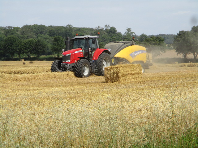 Into a field where the farmer is baling
