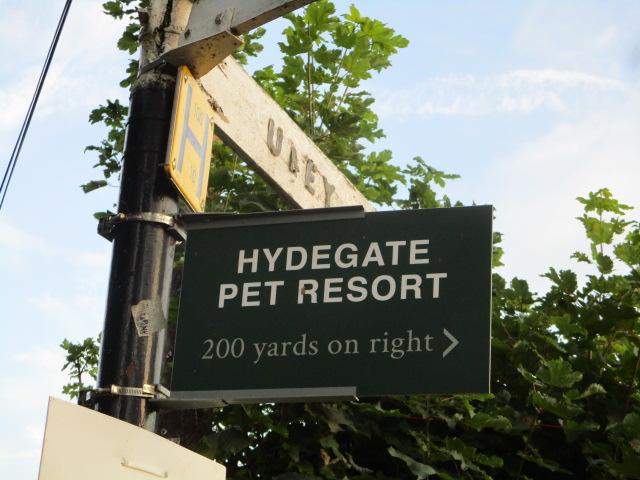 We descend to the kennels (or pet resort!)