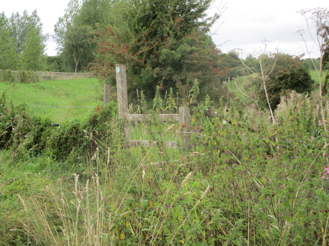 This is the stile that was underwater when Ann did this walk before