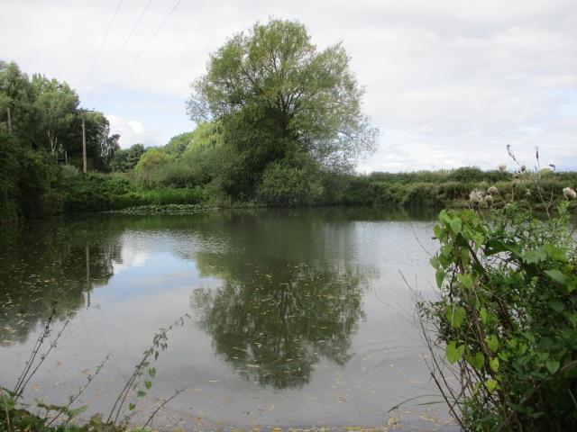 We pass a pond