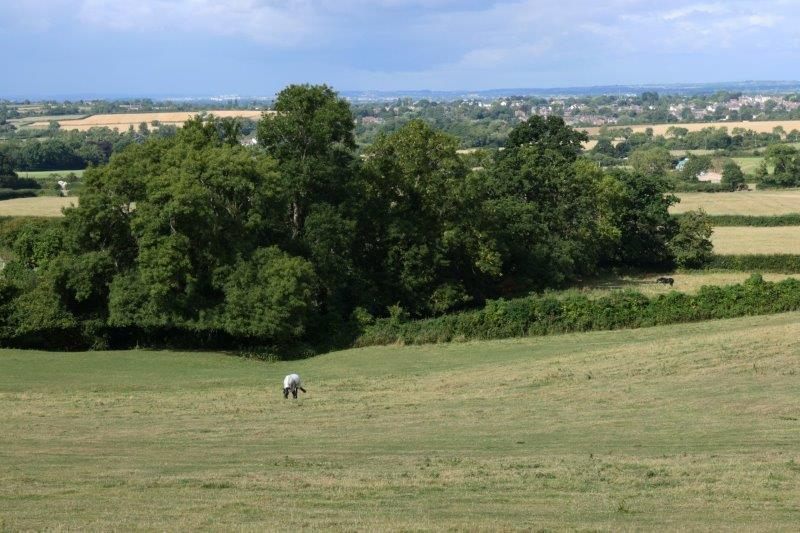 With views down to the Severn Valley